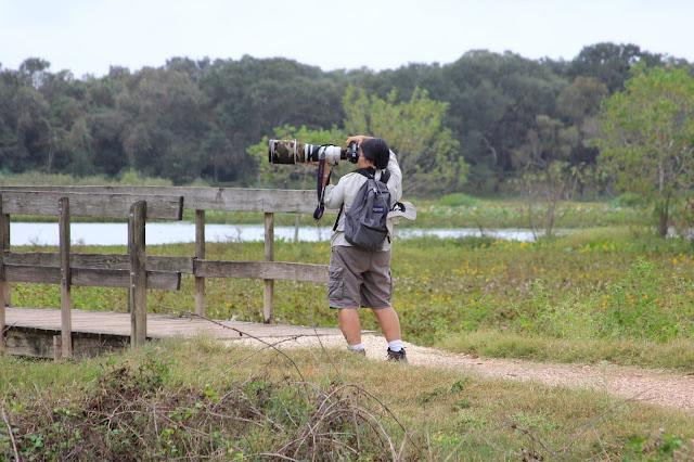 Lens Envy-Brazos Bend State Park, Needville, Texas