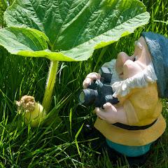 Nicéphore Profession :  Nain de jardin photographe ...