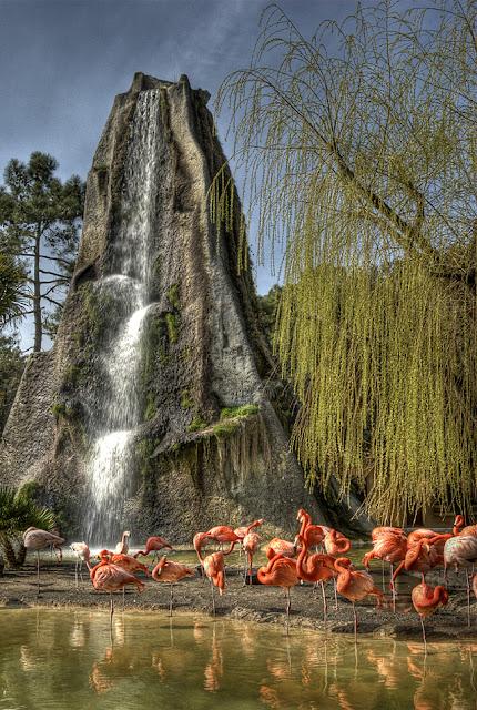a visiter en charentes maritimes, zoo palmyre,  photo fabien monteil