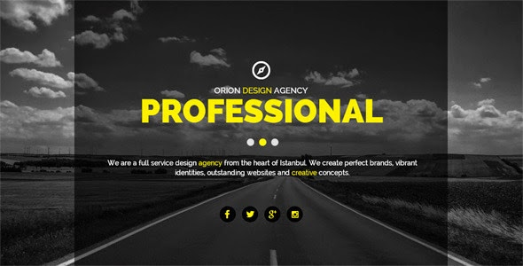 Orion One Page Muse Web Template