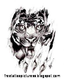 tattoos by smitty2872 on Pinterest  Phoenix Tattoos Tiger Tattoo