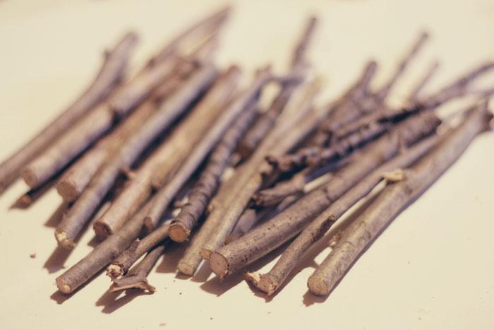 Make A Vase Out Of Sticks Tutorial Time Wonder Forest