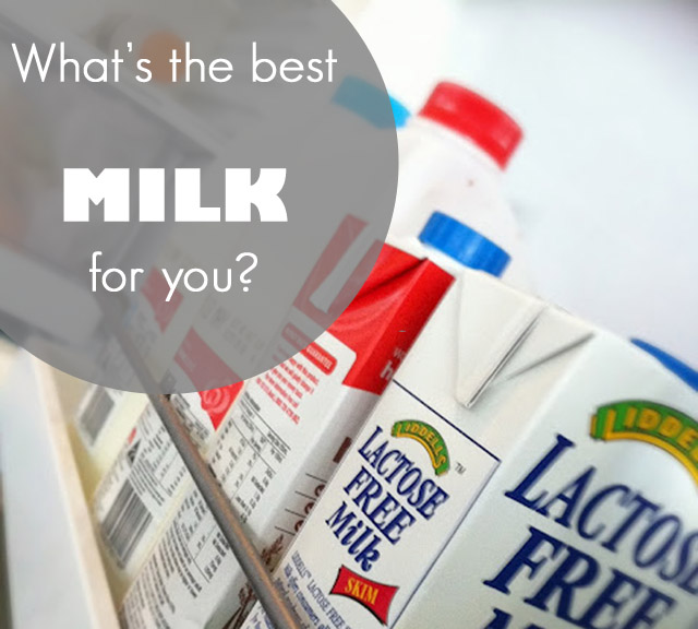 photo49+copy - Which Milk is Best? Let's Unconfuse the Milk Aisle