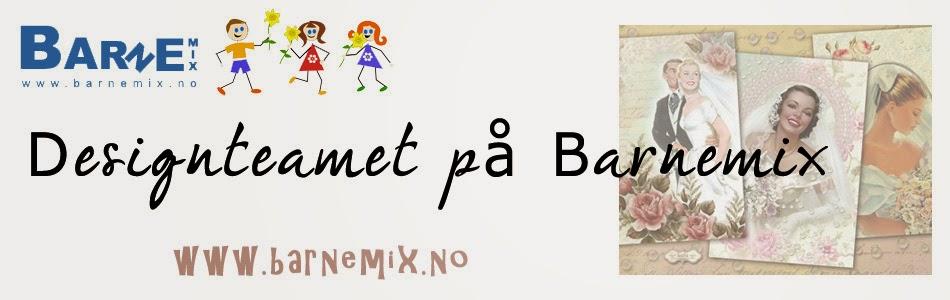 Dt - Barnemix