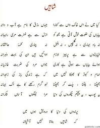Allama Iqbal Poetry shaheen