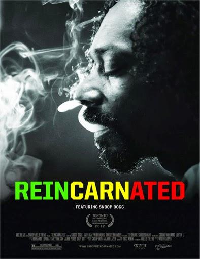 Ver Reincarnated Online