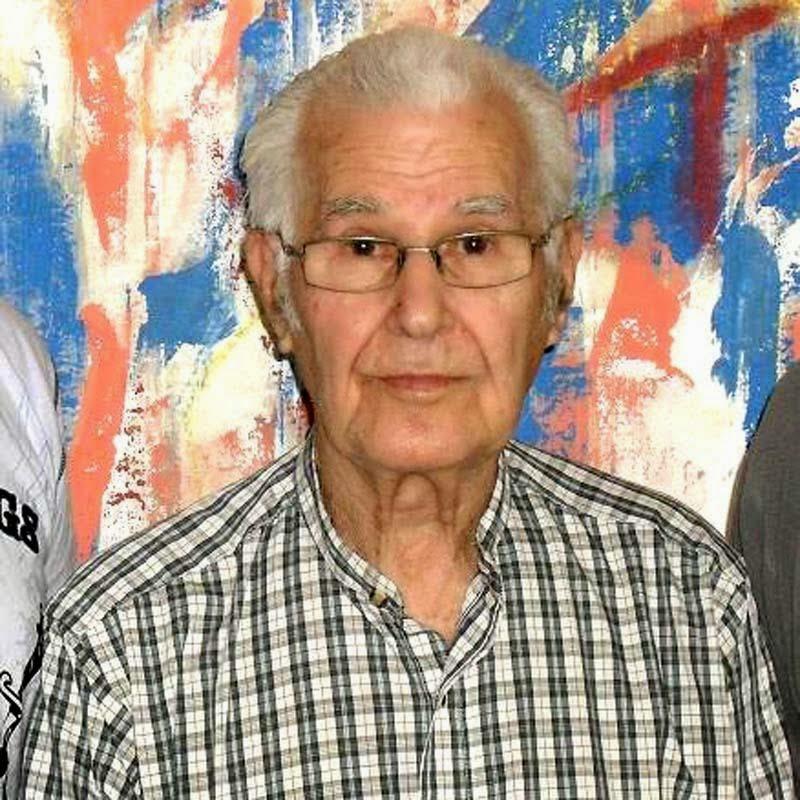 Danúbio Gonçalves - pintor