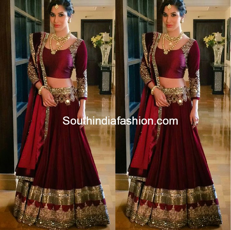 sophie choudry at sanjay hindhuja's wedding