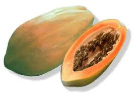 Can papaya prevent and heal cancer?