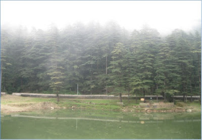 Mcleodganj, dharamsala, hill stations, buddhism, india, travel, dal lake