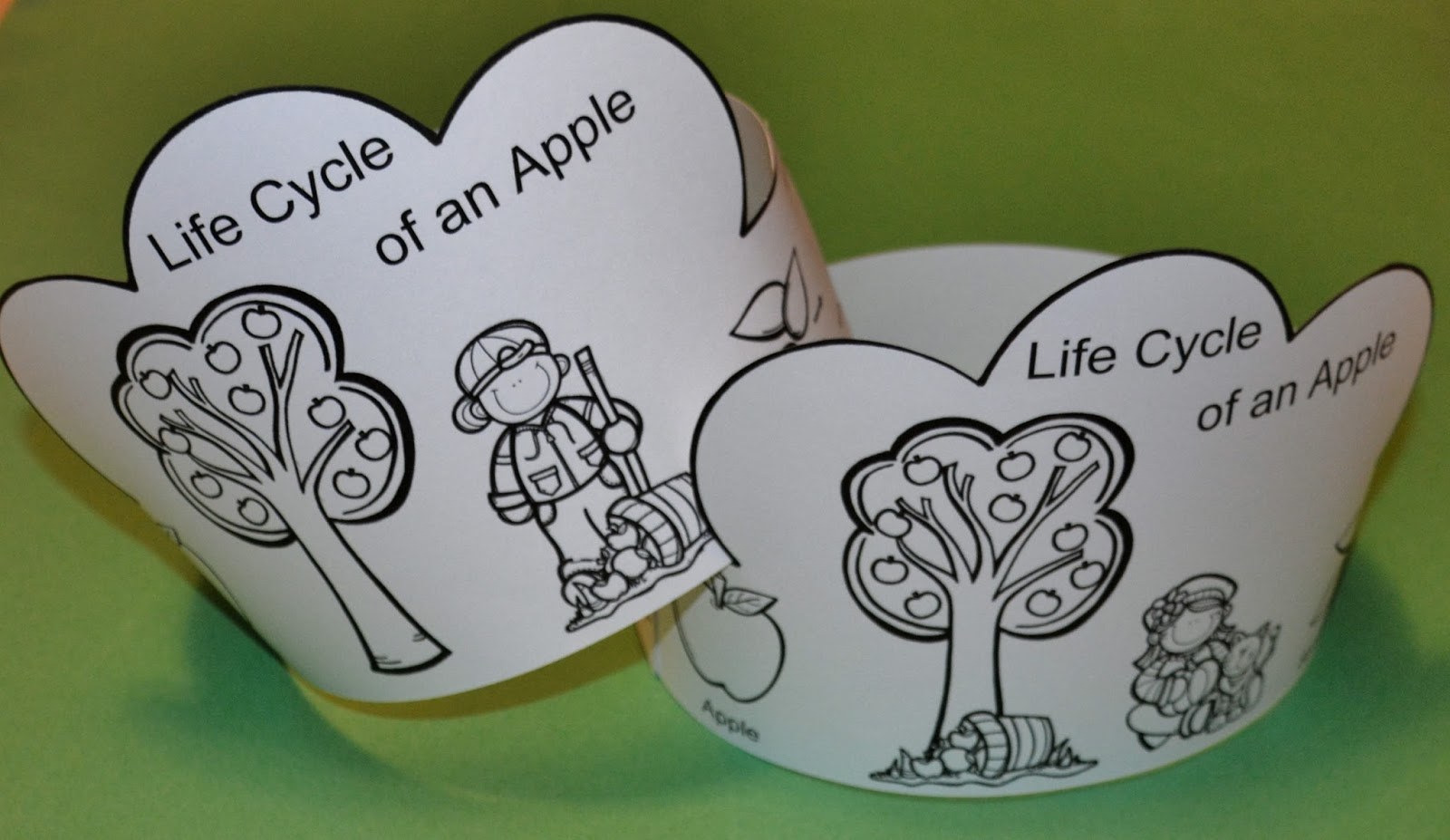 1 - 2 - 3 Learn Curriculum multiplication, free worksheets, learning, and worksheets Apple Tree Life Cycle Worksheet 2 927 x 1600