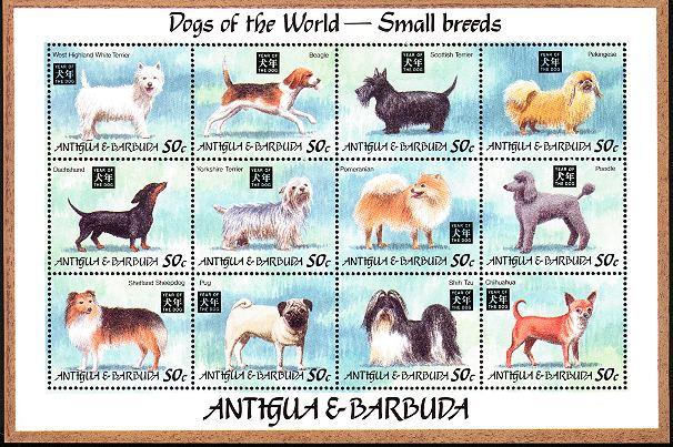 1995年アンティグア・バーブーダ ウエスト・ハイランド・ホワイト・テリア ビーグル スコティッシュ・テリア ペキニーズ ダックスフンド ヨークシャー・テリア ポメラニアン プードル シェットランド・シープドッグ パグ シー・ズー チワワの小型犬12種の切手シート