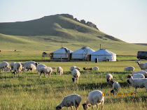 Ger Homestead on the Mongolian Steppes outside Ulaanbaatar, Mongolia