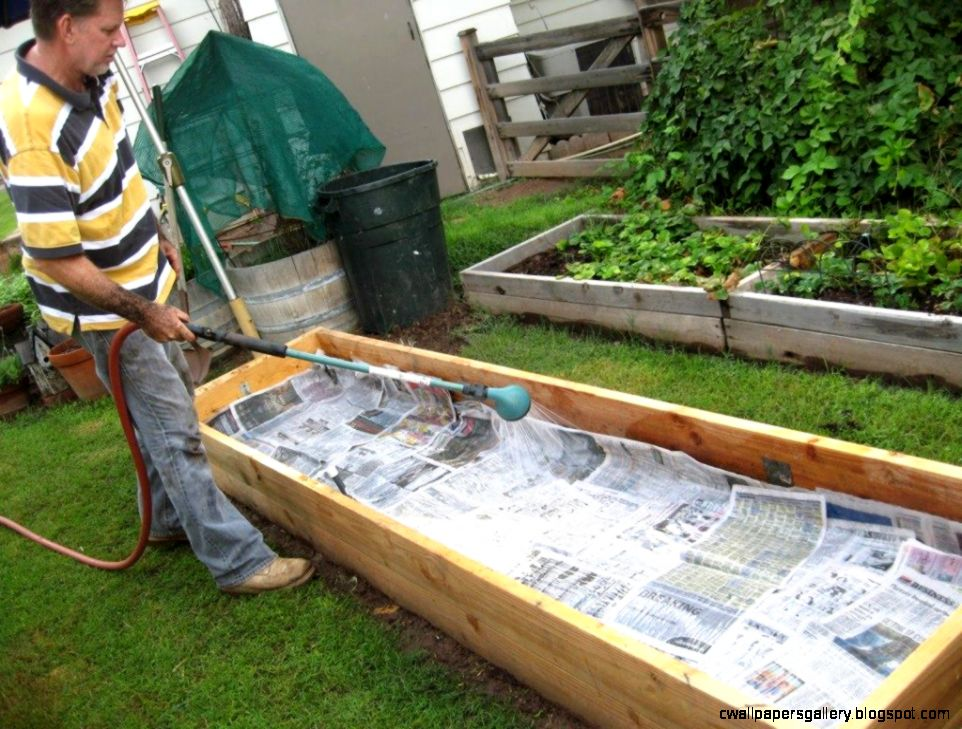 Backyard vegetable garden boxes wallpapers gallery for Fun vegetable garden ideas