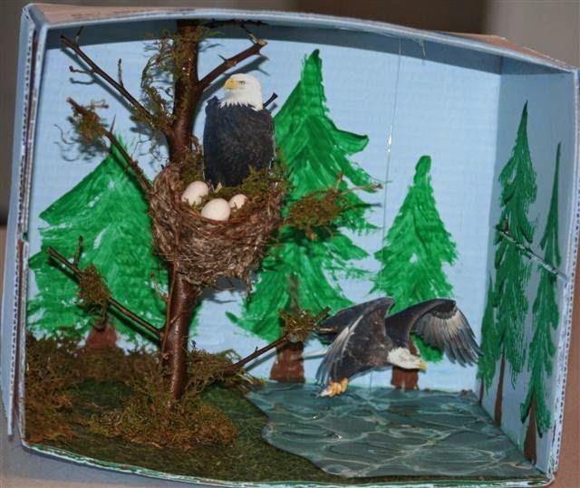 Mrs Hoschouer Animal Diorama