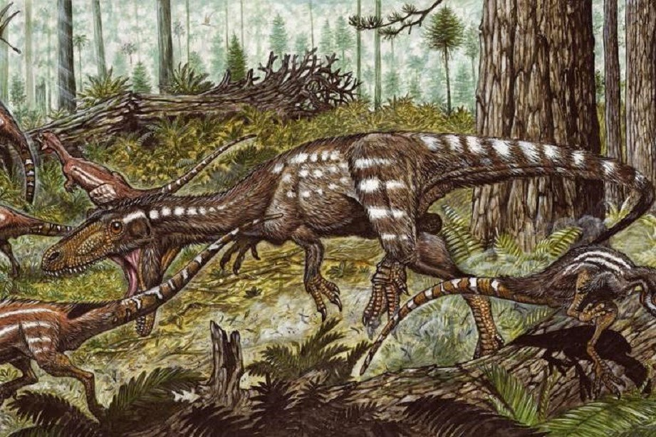 an overview of the dinosaur species from the ancient history Allosaurs (also known as allosauroids) a group of two-legged, meat-eating dinosaurs named for one of its oldest species, allosaurus argentinosaurus a massive long-necked, plant-eating dinosaur belonging to the sauropod family.