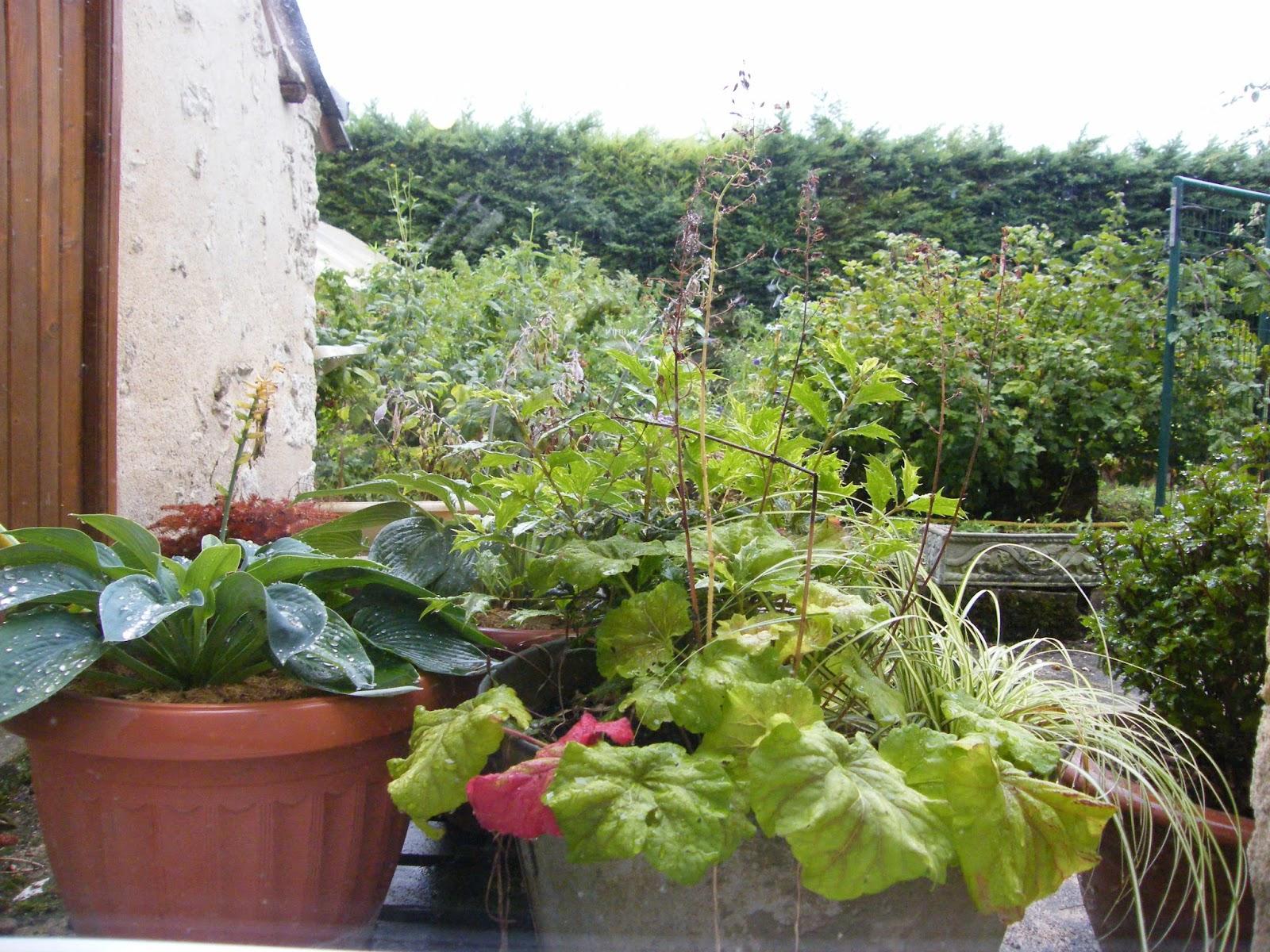 Au gr du jardin sur le pas de la porte for Cuisine qui donne sur le jardin