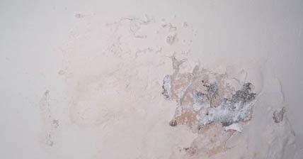 Marzua c mo eliminar la humedad de las paredes - Como tratar la humedad en las paredes ...