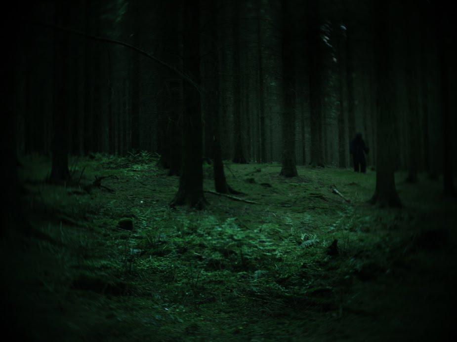 logulogu: Haunted Forest
