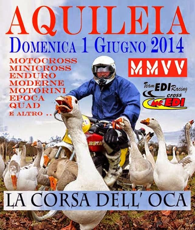 LA CORSA DELL'OCA AQUILEIA 2014
