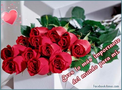 flores romanticas para amor