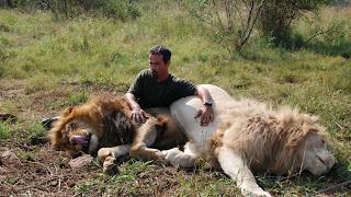 le monde de navis kevin richardson l 39 homme qui murmurait a l 39 oreille des lions. Black Bedroom Furniture Sets. Home Design Ideas