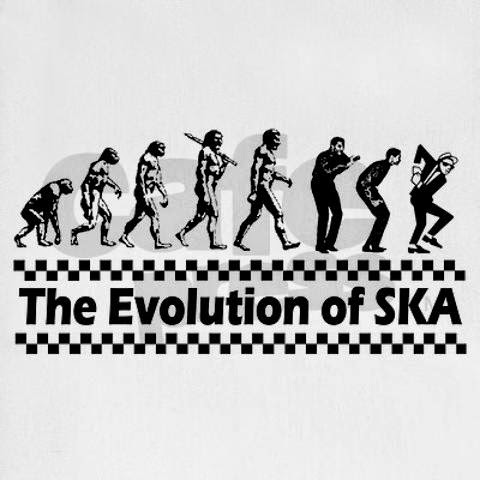 EVOLUCION DEL SKA