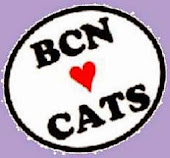 Quality Tours supports BCN ♥ Cats