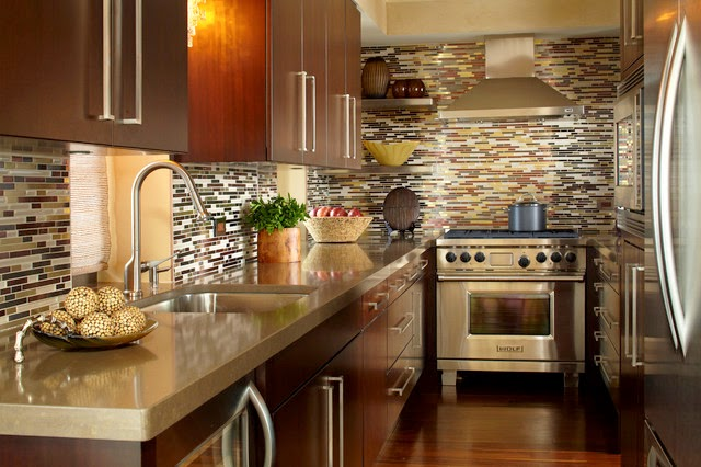 Kitchens From Across America and France