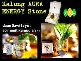 tiens aura energy menyegarkan sayuran