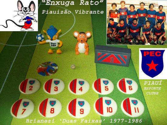 Piauí Esporte Clube
