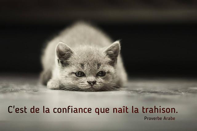 proverbe sur la confiance