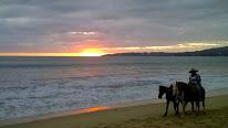 Les plages du Pacifique