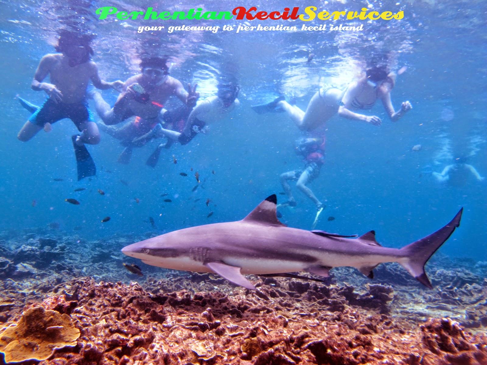 Pakej Snorkeling Pulau Perhentian