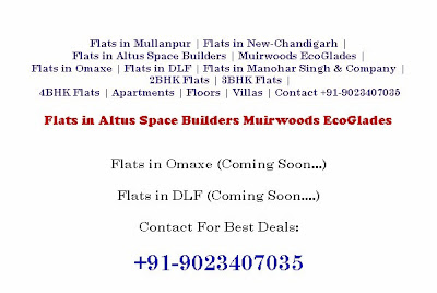Flats in Mullanpur New-chandigarh, OMAXE, DLF, ALTUS, MANOHAR SINGH