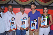 Preminchali Movie Platinum Disk function-thumbnail-1