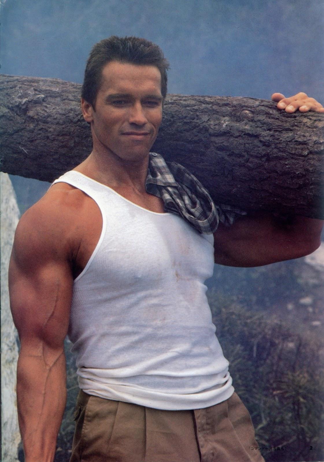 http://3.bp.blogspot.com/-kgKlctuR-qE/UPLv1DlxZZI/AAAAAAAADgA/K5nk6F169mk/s1600/Arnold+Schwarzenegger+as+John+Matrix.jpg