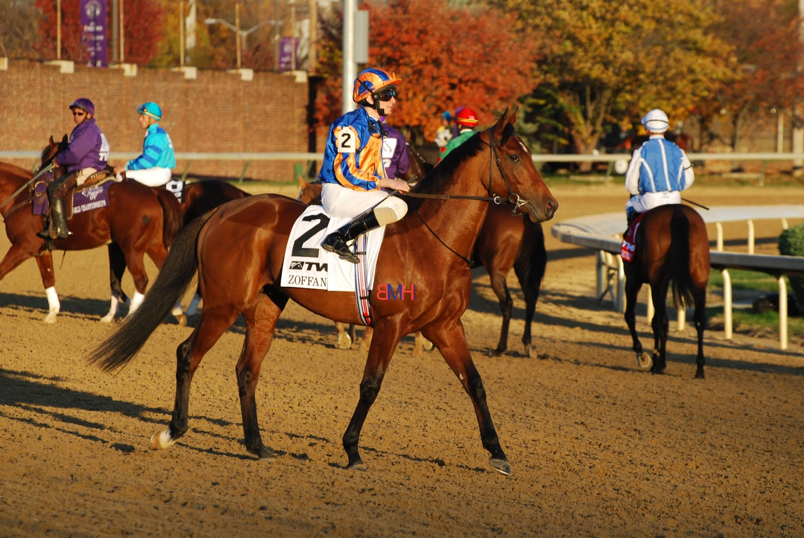 Image result for Zoffany horse