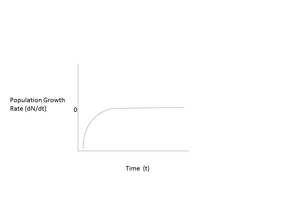02 saving exponential growth essay example Economic growth – essay sample economic growth can be defined as an increase in the capability of the economy to produce different services and products at different periods of time it is similar to economic development.