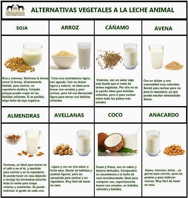 Distintos tipos de leche, usos y beneficios