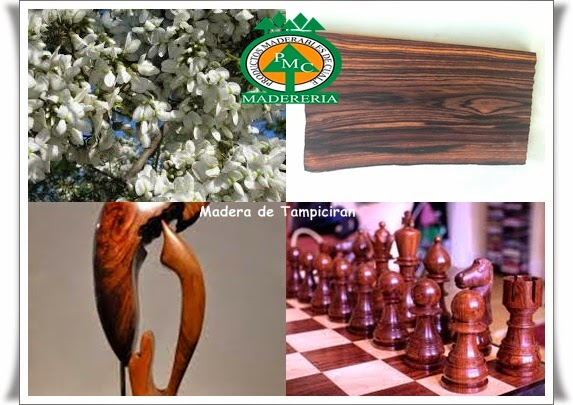 madera-tampiciran-cocobolo-madera-exoticas-maderas-duras-maderables-cuale-vallarta