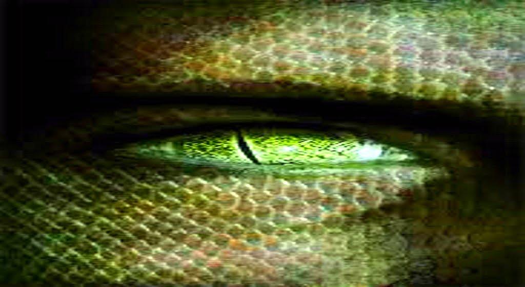 MATRIX: Así nos controlan los Reptiles (SPECIES - SALIENDO DE LA JAULA)