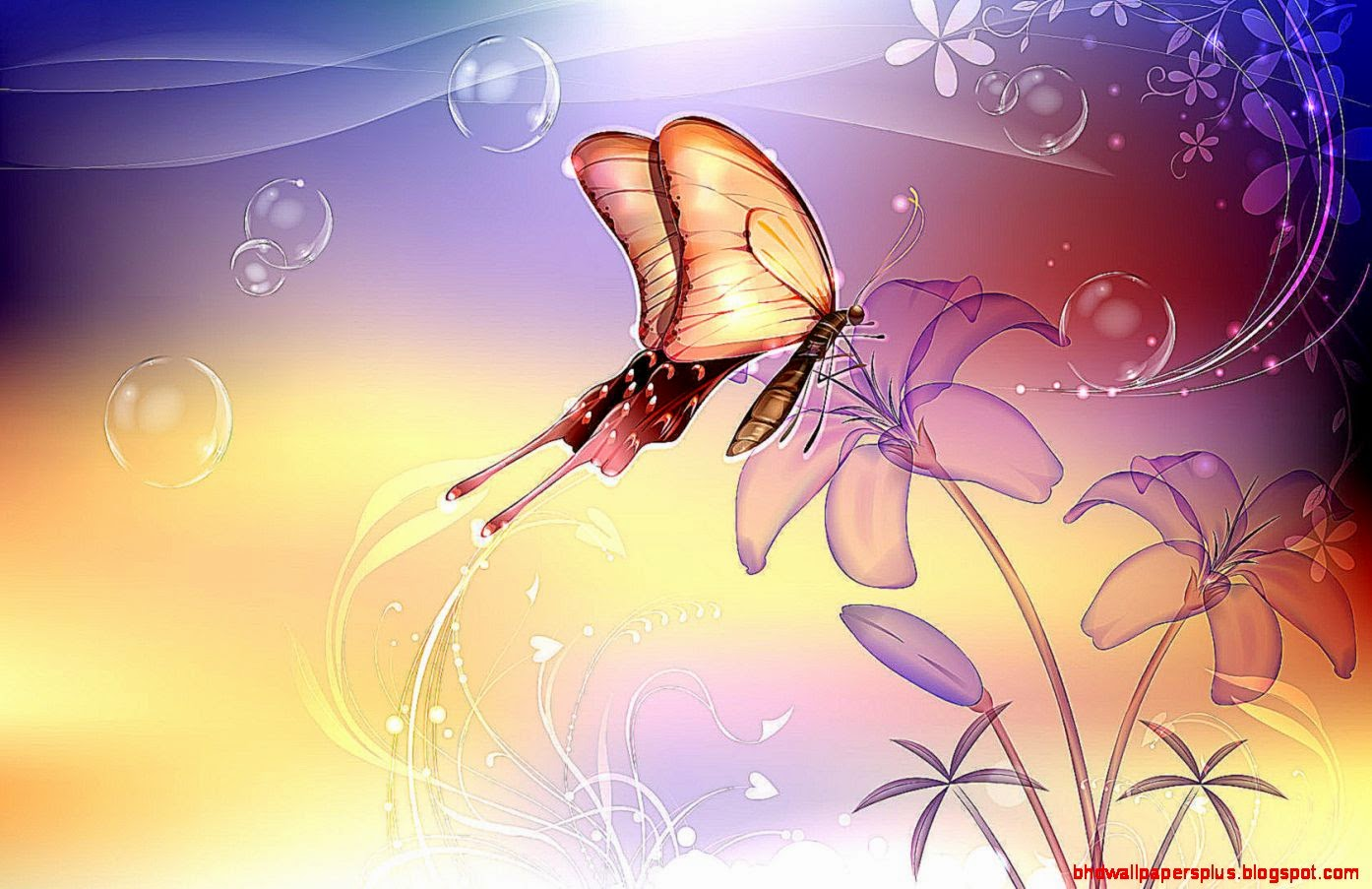 Butterfly On The Flower Wallpaper   WallpapersDB