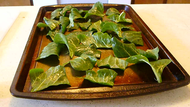 Chard ready to bake