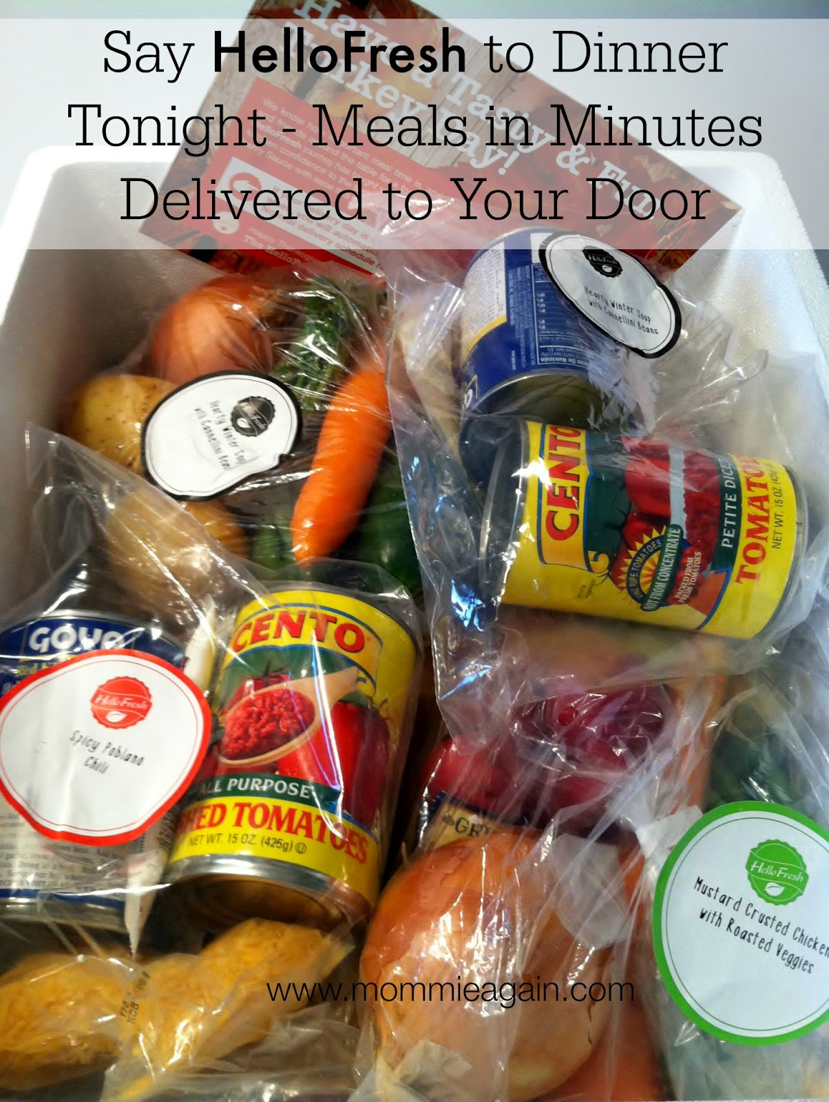 Food waste argumentative essay