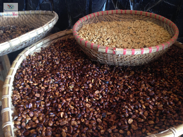 Visite de la ferme du café de civettte à Dalat