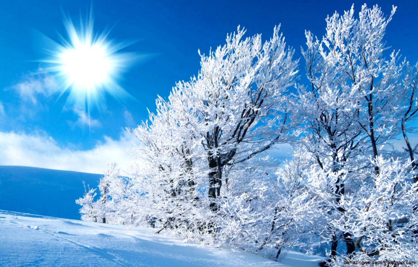 Winter Season Wallpaper 6984987