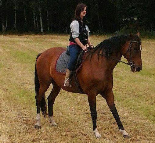 Katharina Die Große Pferd Gestell: Schöne Virtuelle Reiterwelt