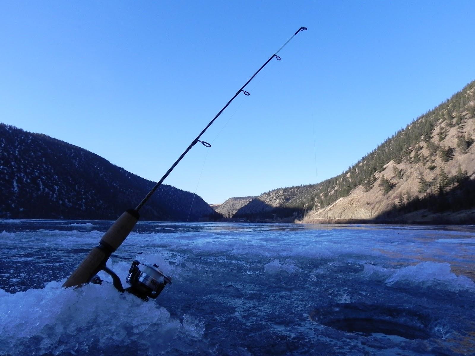 Fishing Reports  Y...