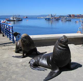 Más de Talcahuano Nuestro Puerto